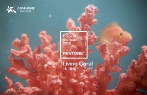 المرجاني سيكون لون سنة 2019